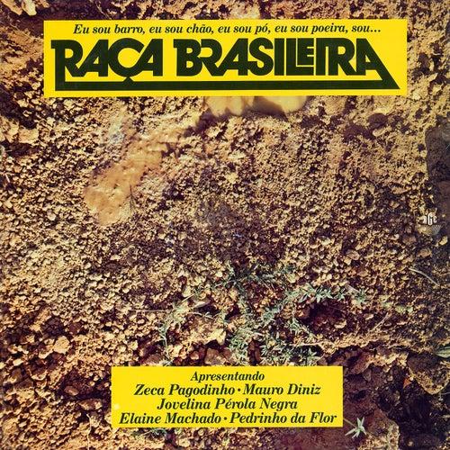 Raça Brasileira de Various Artists