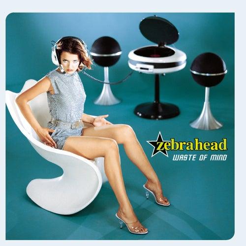 Waste Of Mind by Zebrahead