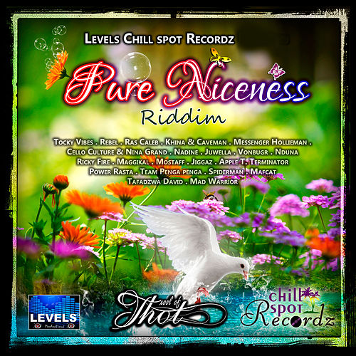 Pure Niceness Riddim by Various Artists