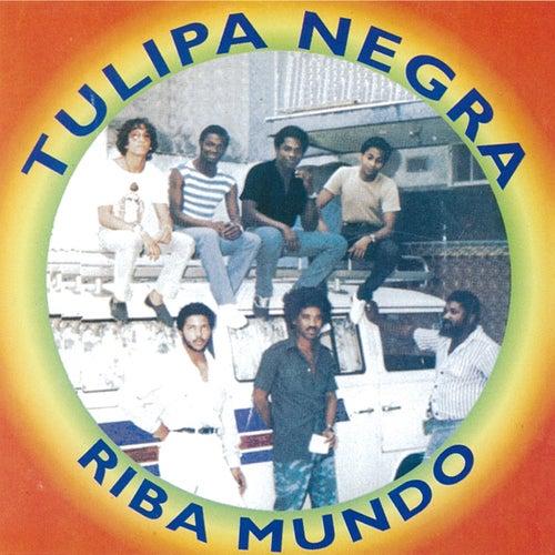 Riba Mundo by Tulipa Negra