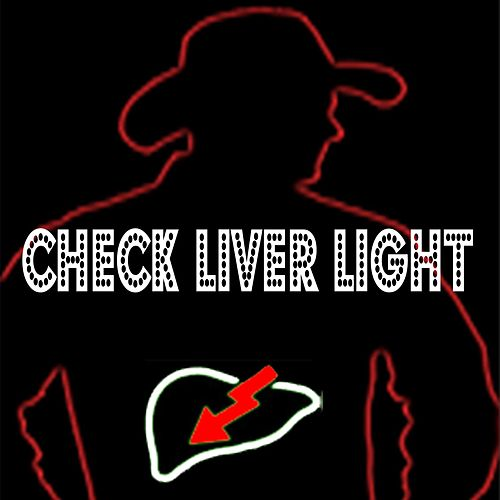 Check Liver Light by Jamie Bergeron