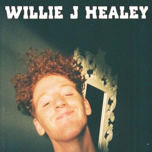 Dude Like Him de Willie J Healey