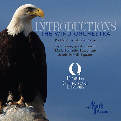 Introductions von Various Artists