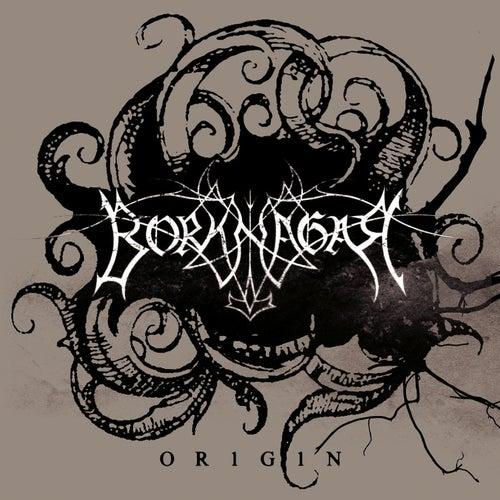 Origin by Borknagar