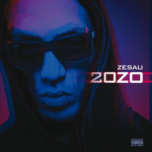 20z0 de Zesau
