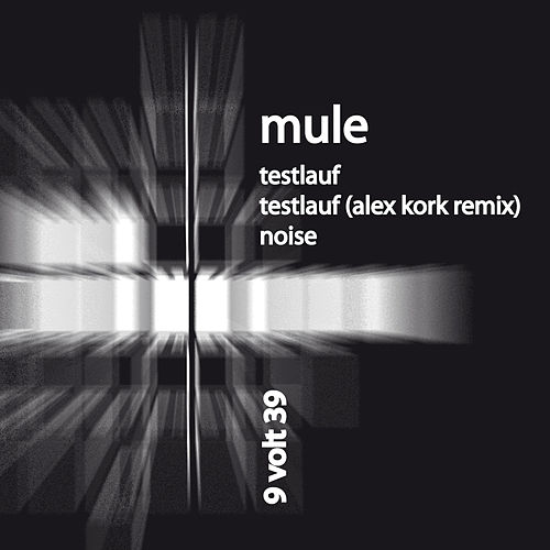 Testlauf de Mule