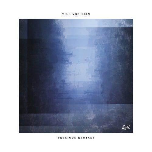 Precious Remixes von Till Von Sein