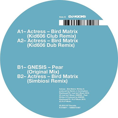 Bird Matrix (Remixes) von Actress