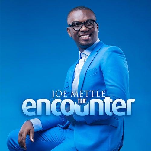 The Encounter by Joe Mettle