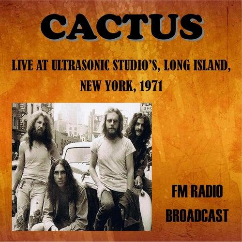 Live at Ultrasonic Studios, Long Island, New York, 1971 - FM Radio Broadcast de Cactus