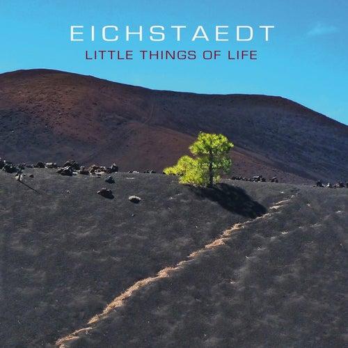 Little Things of Life von Eichstaedt