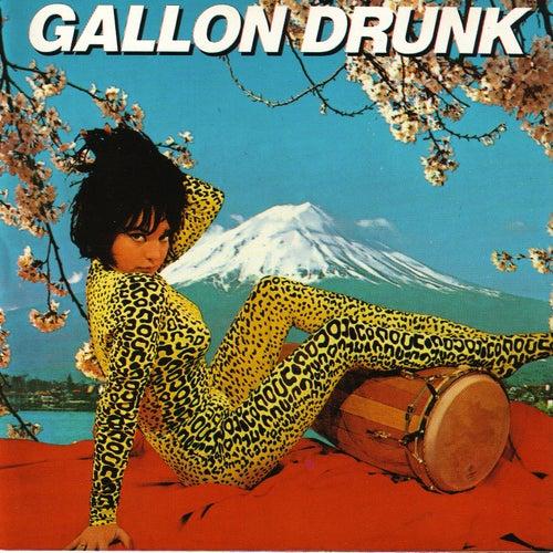 Tonite… The Singles Bar by Gallon Drunk