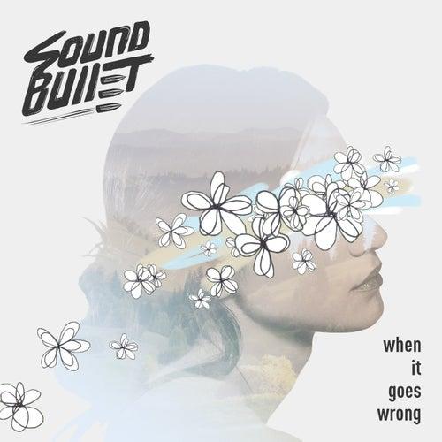 When It Goes Wrong de Sound Bullet