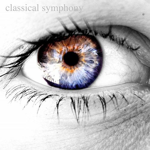 Classical Symphony by Various Artists