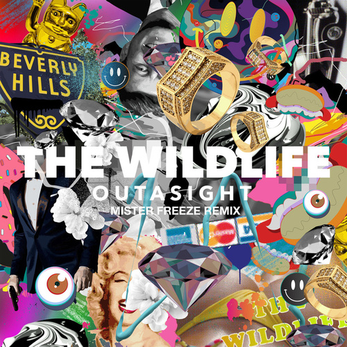 The Wild Life (Mister Freeze Remix) - Single von Outasight