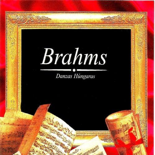 Brahms, Danzas Húngaras von Munich Philharmonic Orchestra