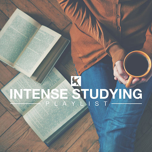 Intense Studying Playlist by Various Artists