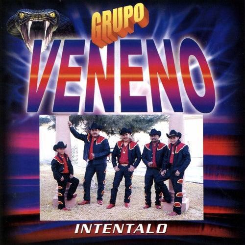 Intentalo de Grupo Veneno