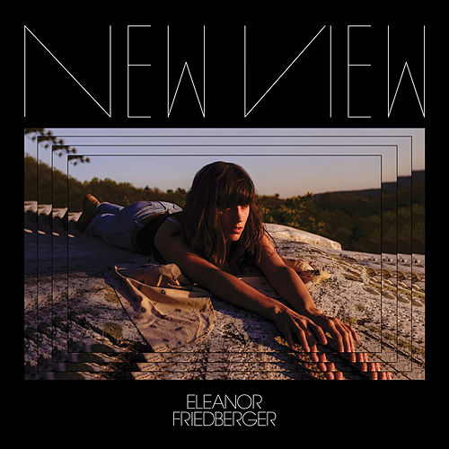 He Didn't Mention His Mother by Eleanor Friedberger