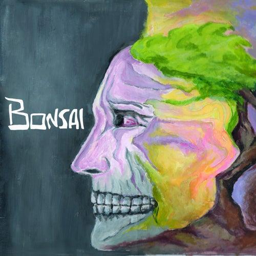 Dusty Demon von Bonsai