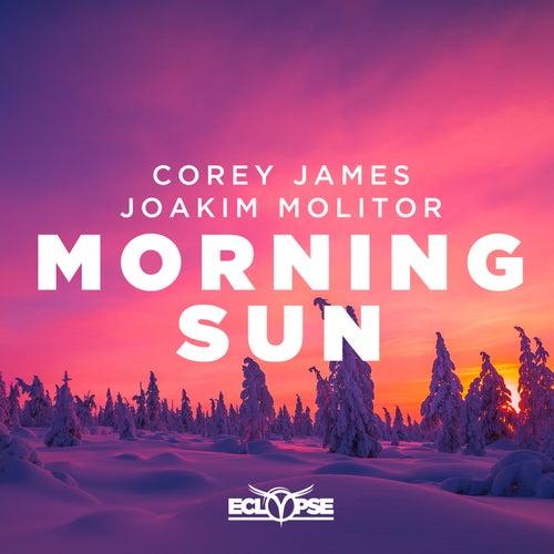 Morning Sun by Joakim Molitor