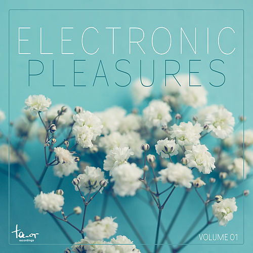 Electronic Pleasures, Vol. 1 by Various Artists