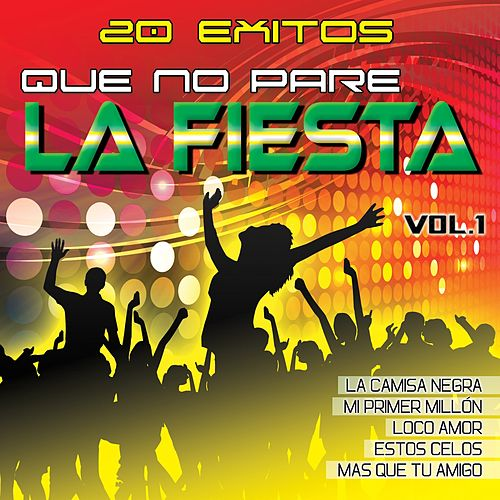 Que No Pare la Fiesta Vol. 1 von Various Artists
