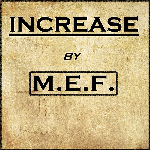 Increase de M.E.F.