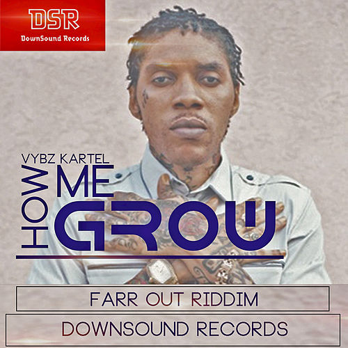How Me Grow by VYBZ Kartel