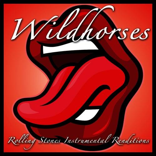Rolling Stones Instrumental Renditions de Wild Horses