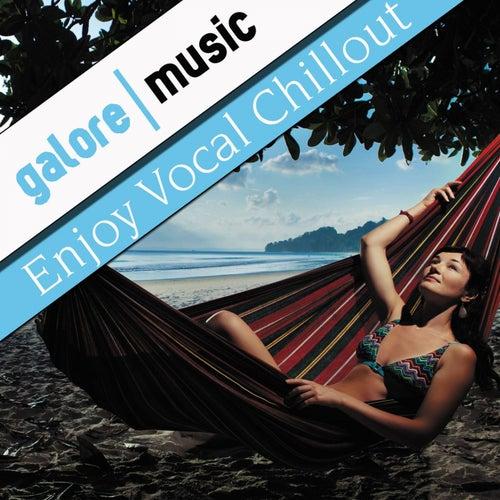 Enjoy Vocal Chillout von Various Artists
