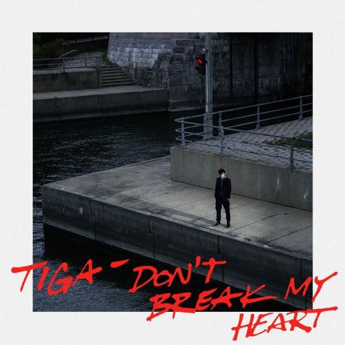 Don't Break My Heart by Tiga