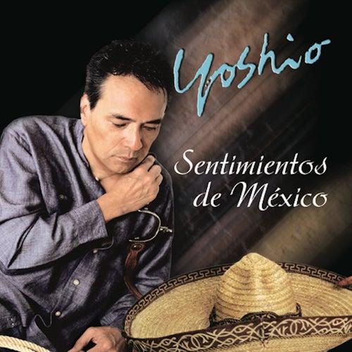 Sentimientos de Mexico by Yoshio