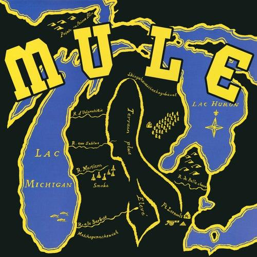 Mule de Mule