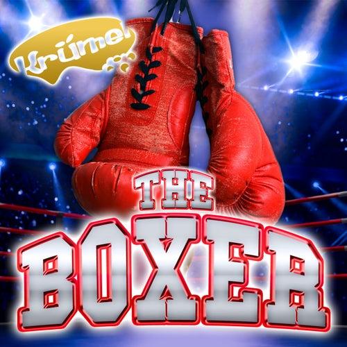 The Boxer von Krümel