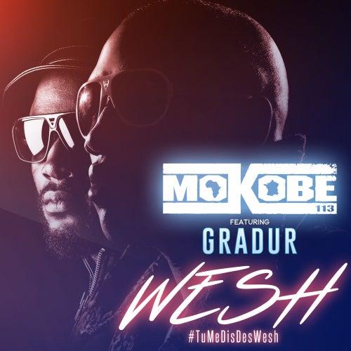 Wesh (#TuMeDisDesWesh) [feat. Gradur] de Mokobé