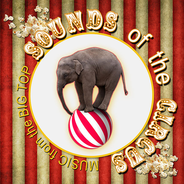 Sounds Of The Circus Music From The Big Top By Funsters For added atmosphere, play the music from this clip while reading on. sounds of the circus music from the