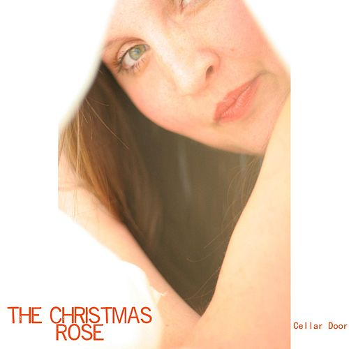 The Christmas Rose von Cellar Door