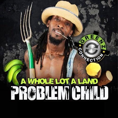 A Whole Lot a Land de Problem Child