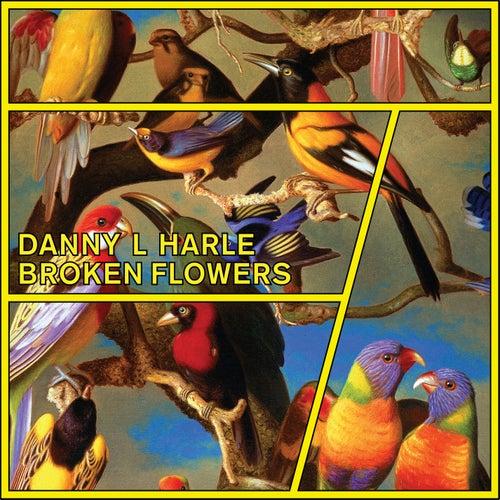 Broken Flowers - EP by Danny L Harle