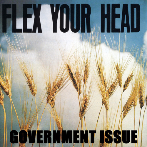 Flex Your Head by Government Issue