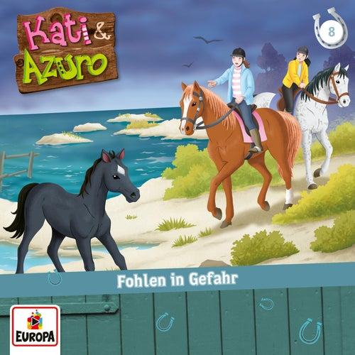 08/Fohlen in Gefahr von Kati & Azuro