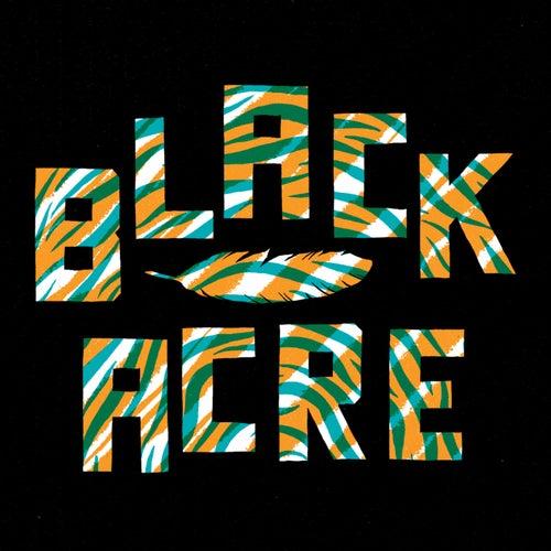 Black Acre: Once Around the Sun 2015 de Various Artists