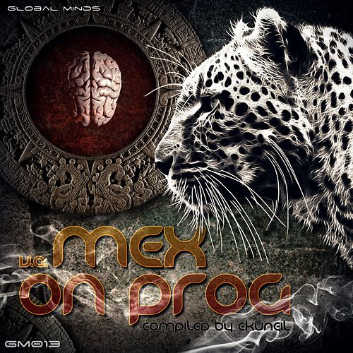Mex on Prog V.A. (Compiled by Ekuneil) by Various Artists