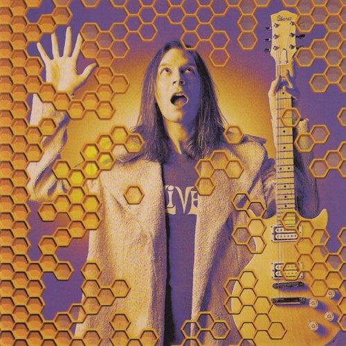 Beehive (Live) by Paul Gilbert