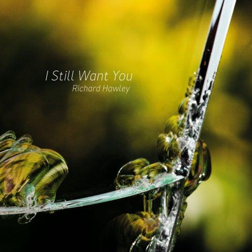 I Still Want You by Richard Hawley