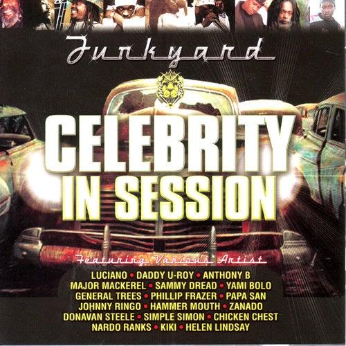 Celebrity In Session von Various Artists