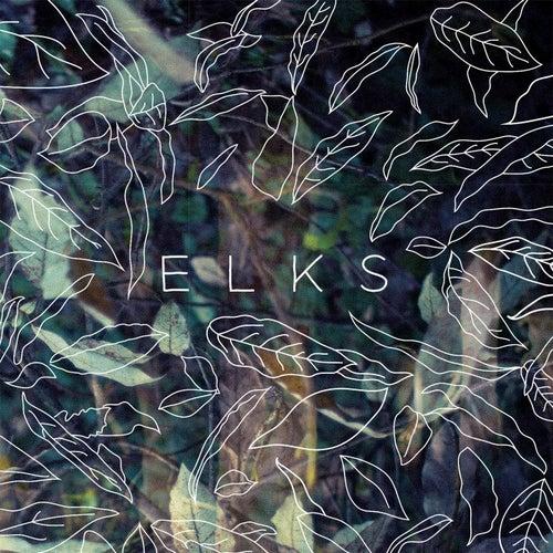 Elks by Elks