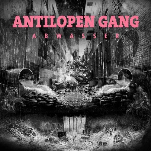 Abwasser von Antilopen Gang