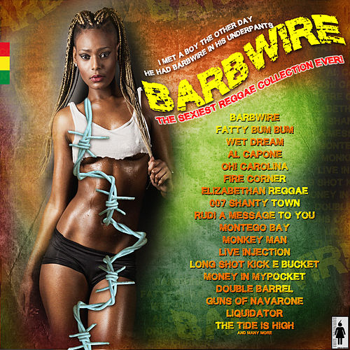 Barbwire - sexy reggae hits von Various Artists